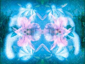 blue_fair